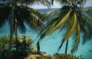 Pestra ponudba turistične agencije